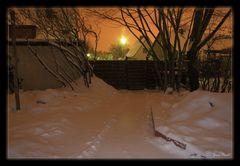Winter - Nachts im Garten