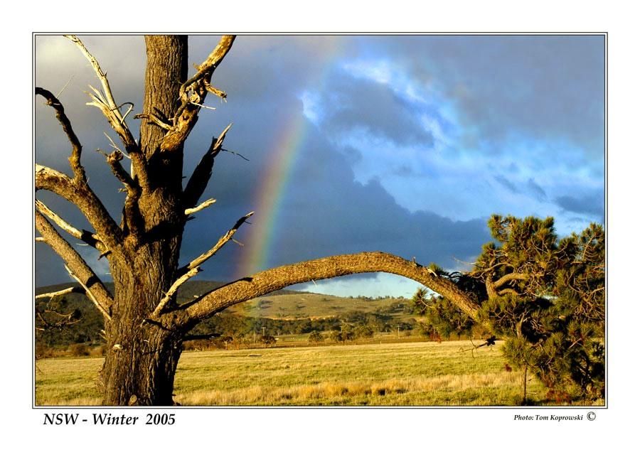 Winter NSW - Australia