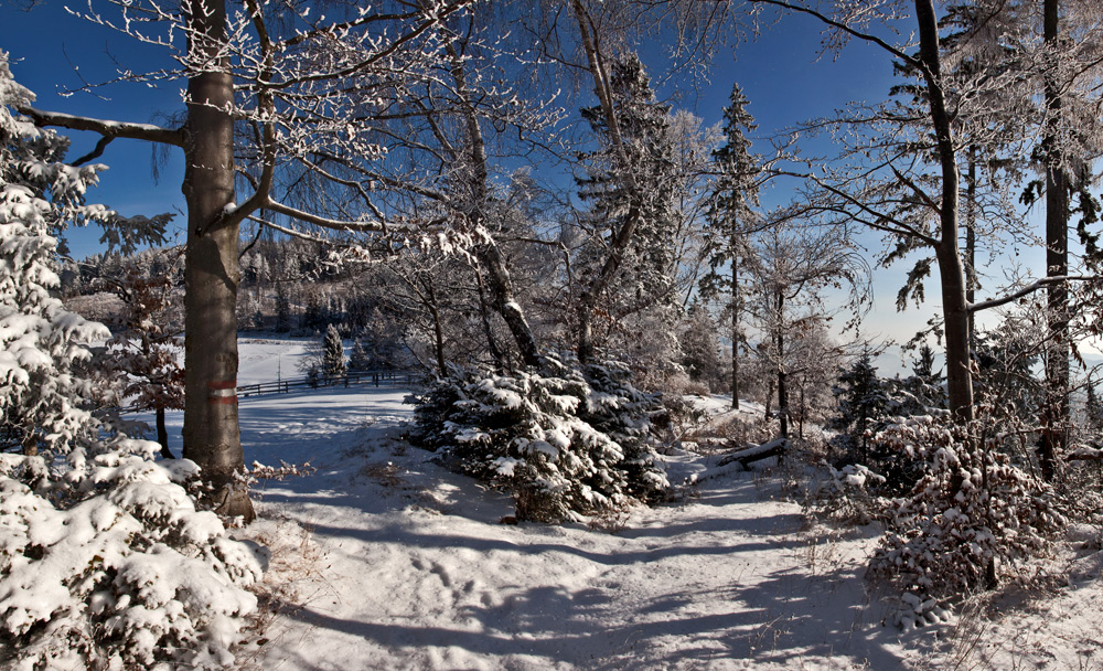 Winter - nun auch bei uns auf dem Plesch!