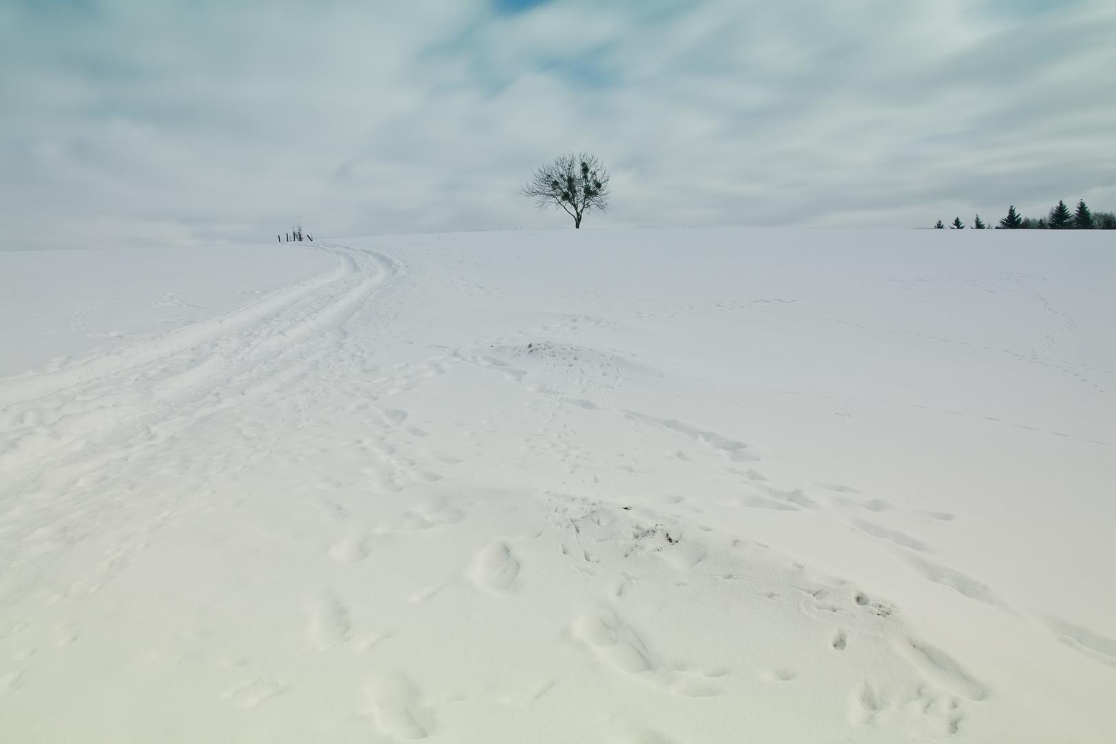Winter ,Odenwald...