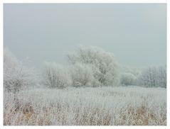 Winter ! - oder: ...alle Farben in Weiß...