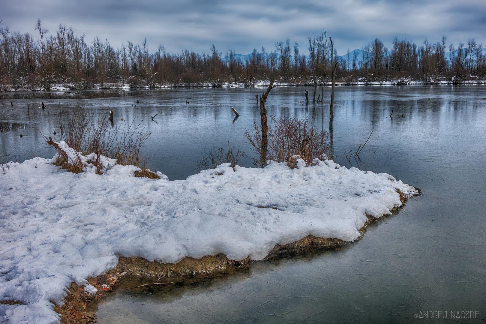 Winter Ponds