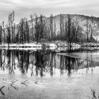 Winter Ponds II