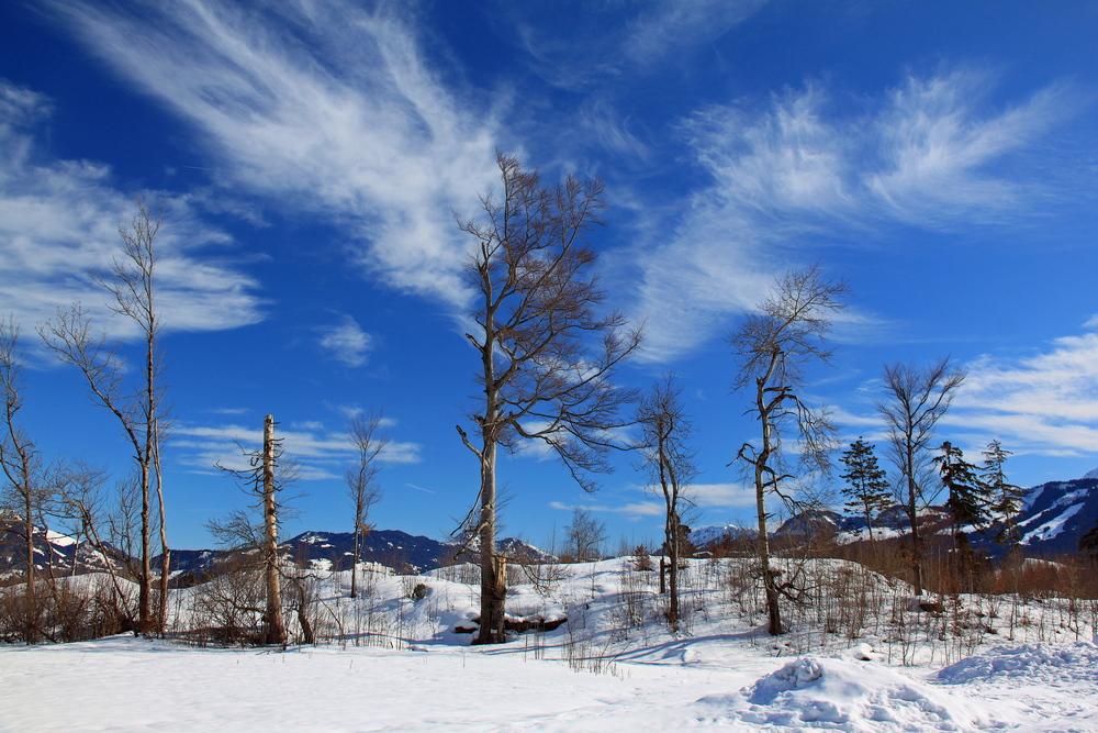 Winter Relax