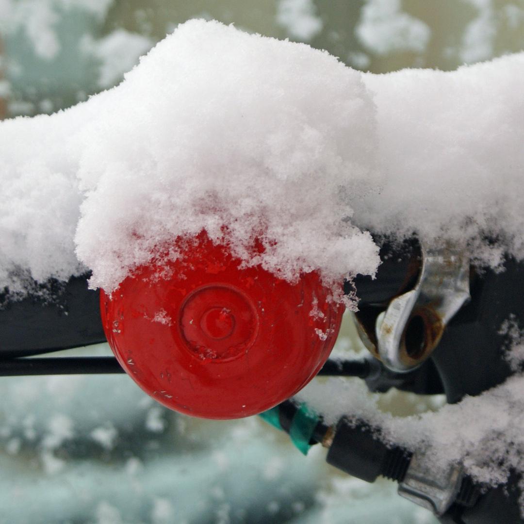Winter Rotweiß-Weiß 1