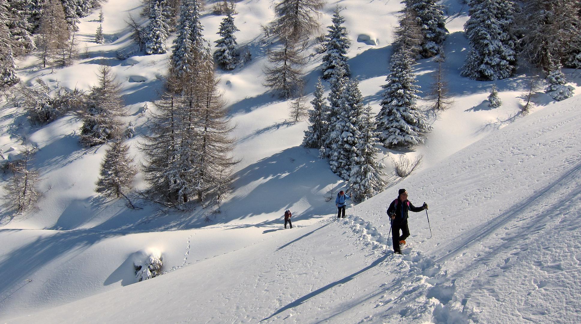 """""""Winter-Schneeschuhwanderung"""" ...."""
