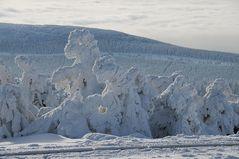 Winter Skulpturen auf den Brocken