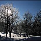 Winter-Sonne 2