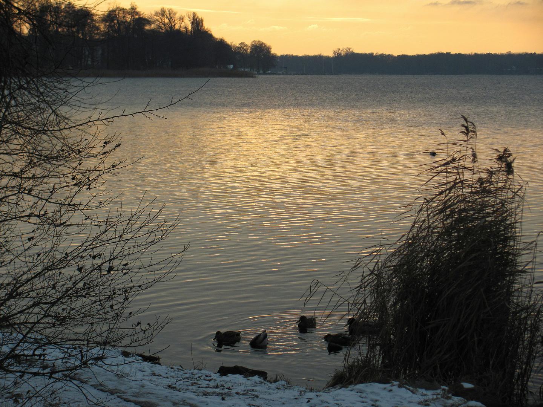 Winter Sonntag am See 6
