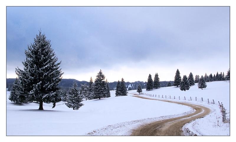 winter story...