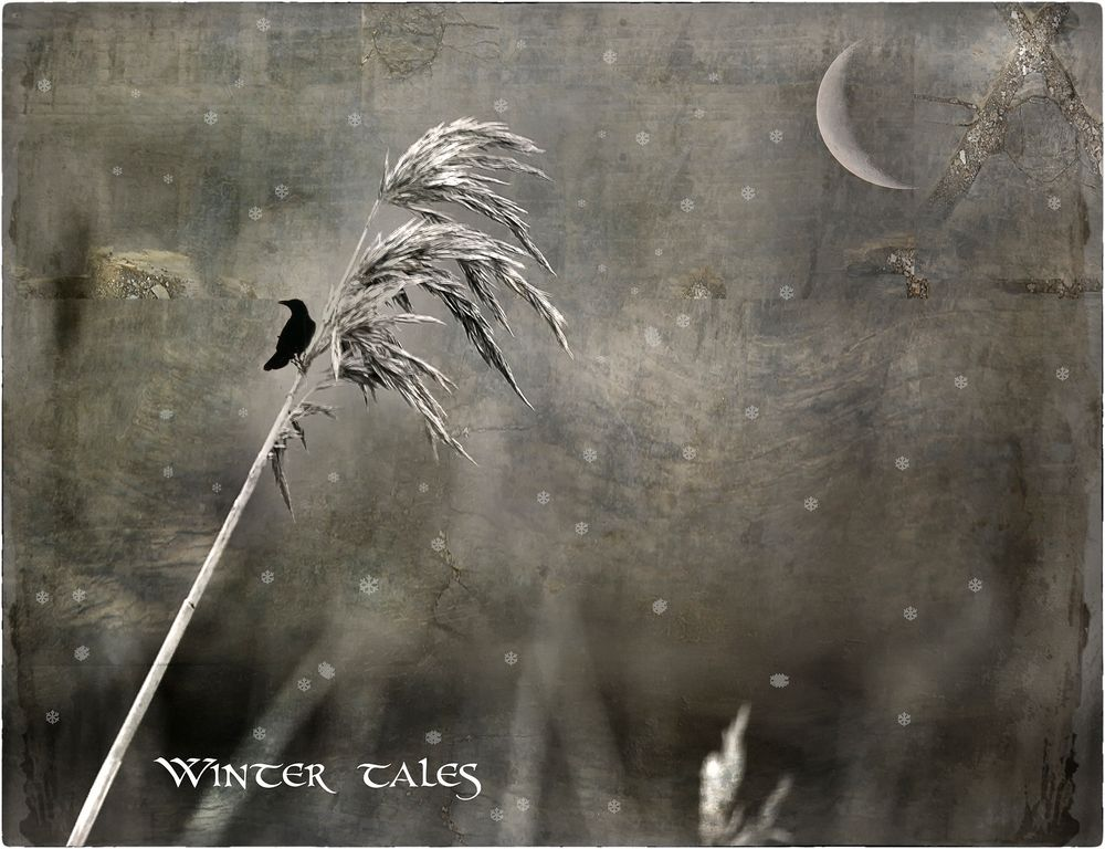 WINTER TALES...THE LAND OF TEARS