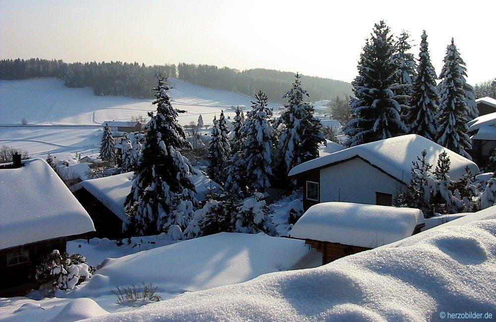 Winter-Traum im Bayerischen Wald