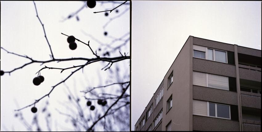 winter tristesse