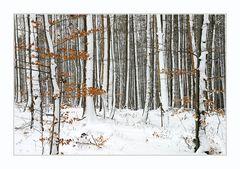 Winter - und kein Ende ... #03