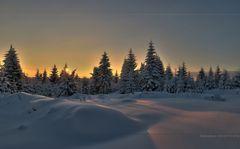 Winter und Natur