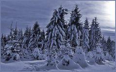 Winter und Schnee...
