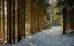 Winter und Sonne...