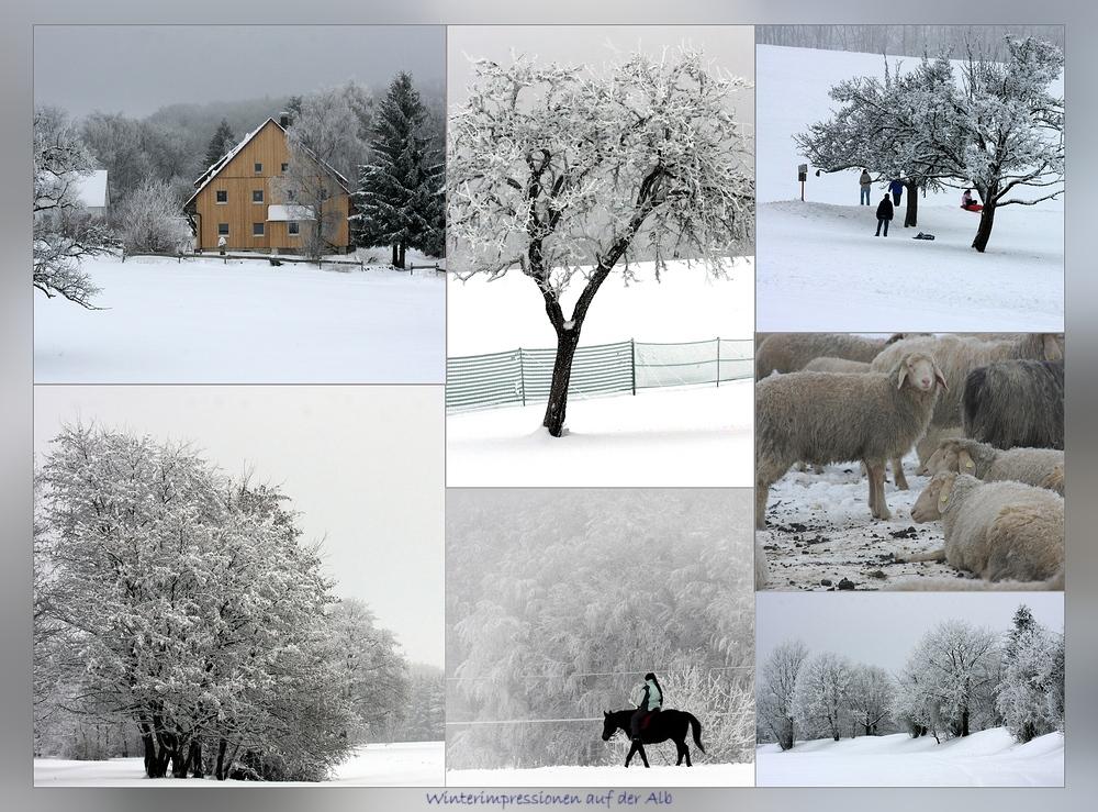 Winter vom Feinsten