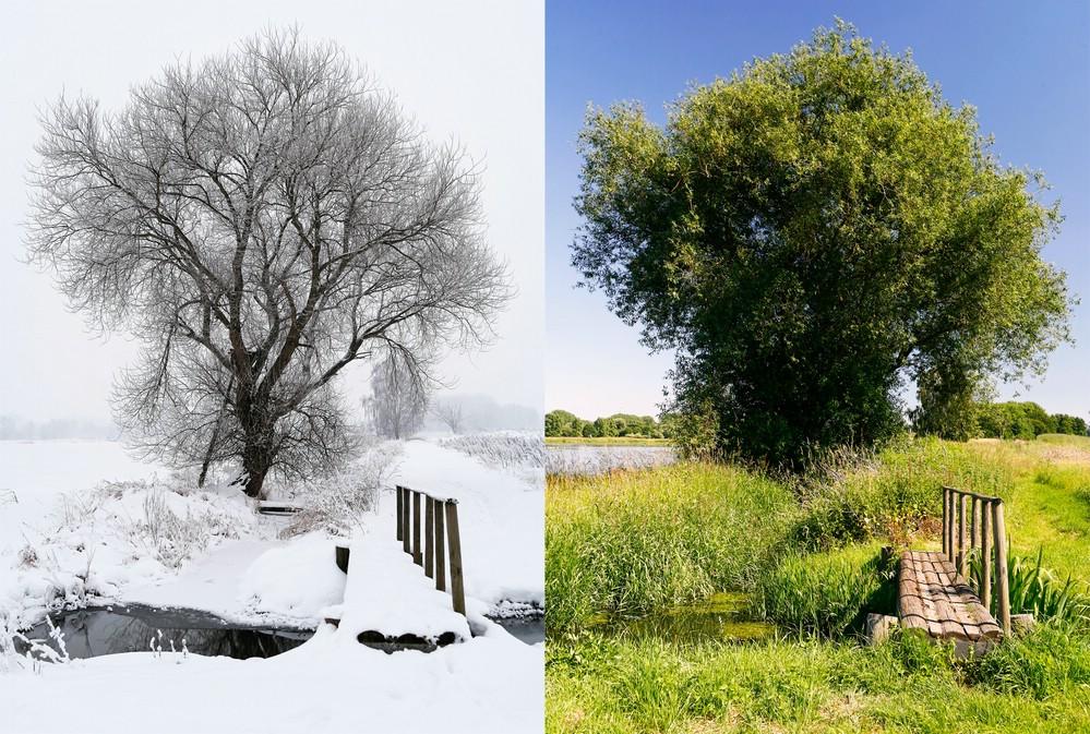 winter vs sommer foto bild jahreszeiten natur bilder auf fotocommunity. Black Bedroom Furniture Sets. Home Design Ideas