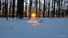 Winter-Wald-Wanderung