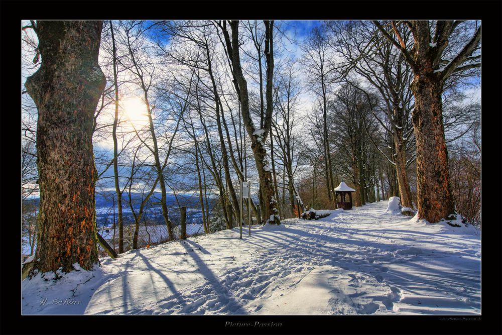 Winter Weg