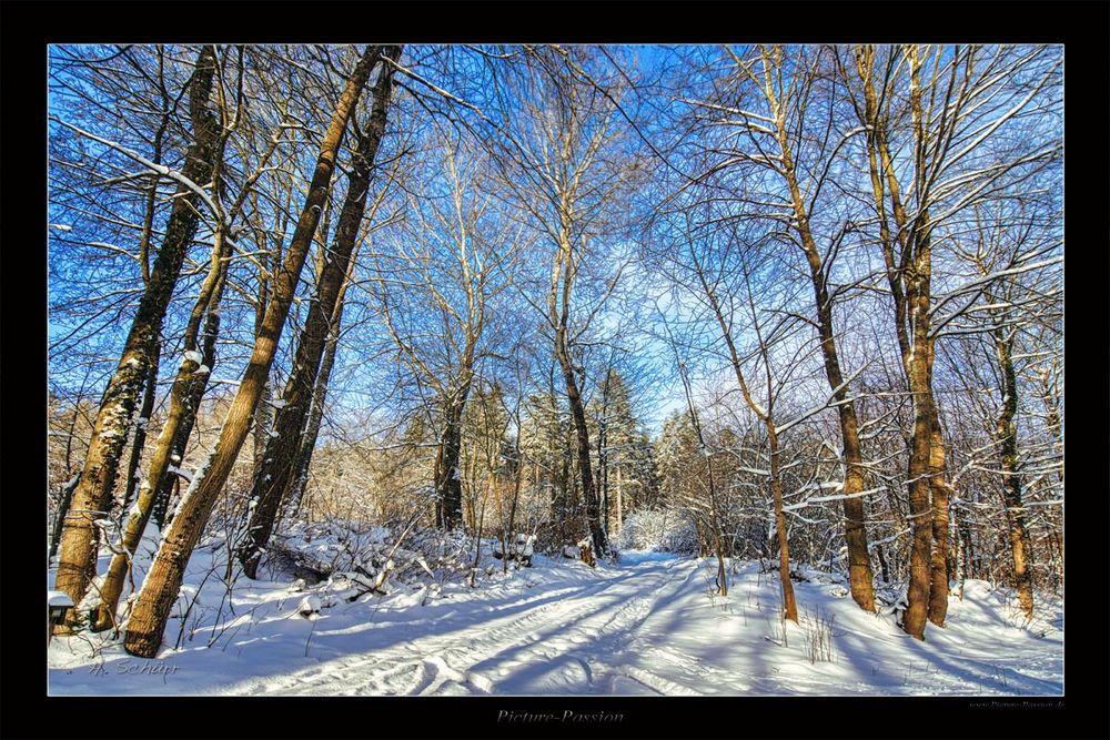 Winter Weg im Fichtelgebirge