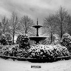 Winter Welt