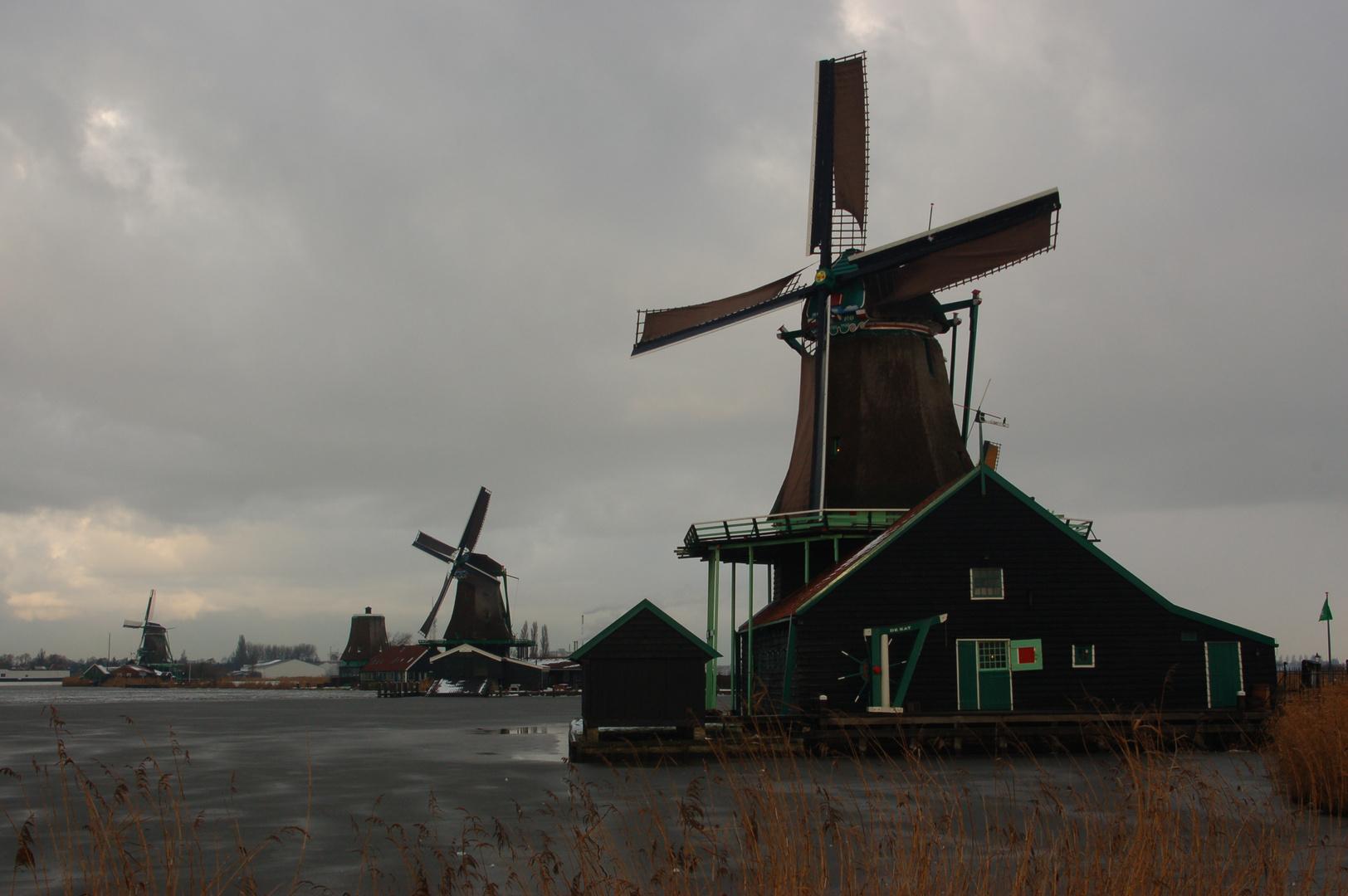 Winter Windmills