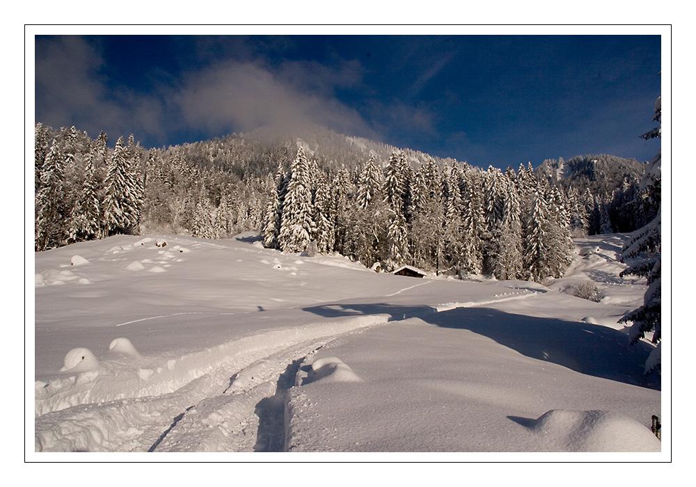 Winter Wondarland IV.
