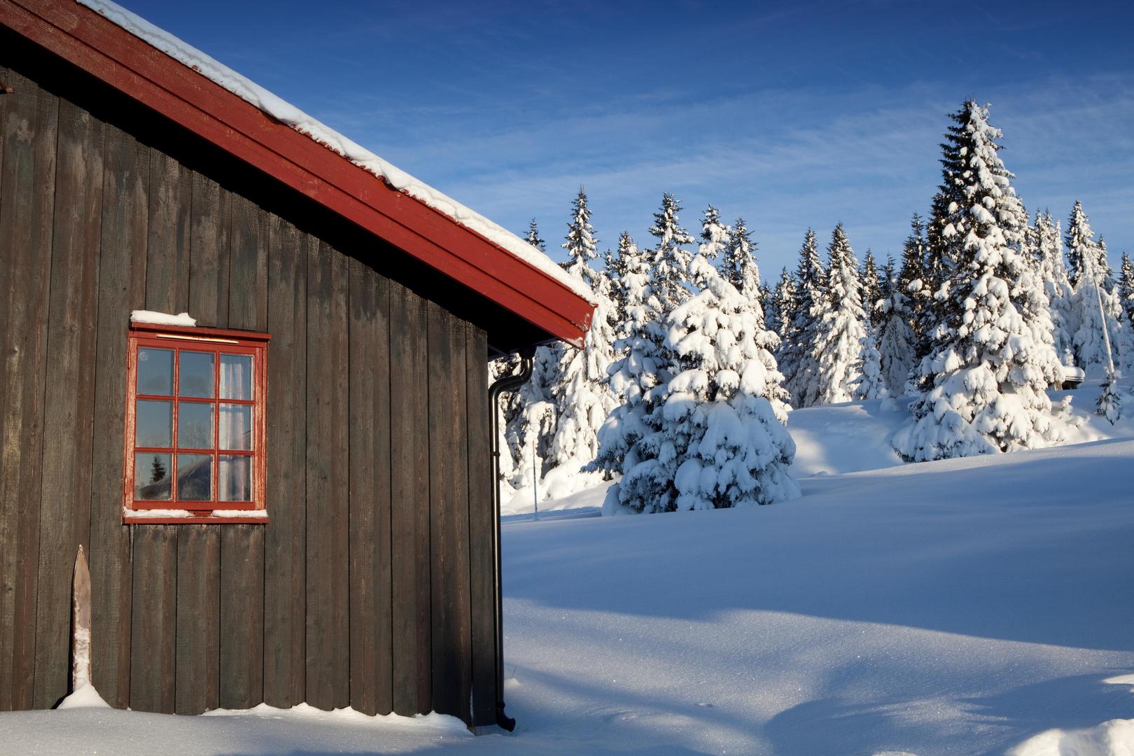 Winter Wonderland ....