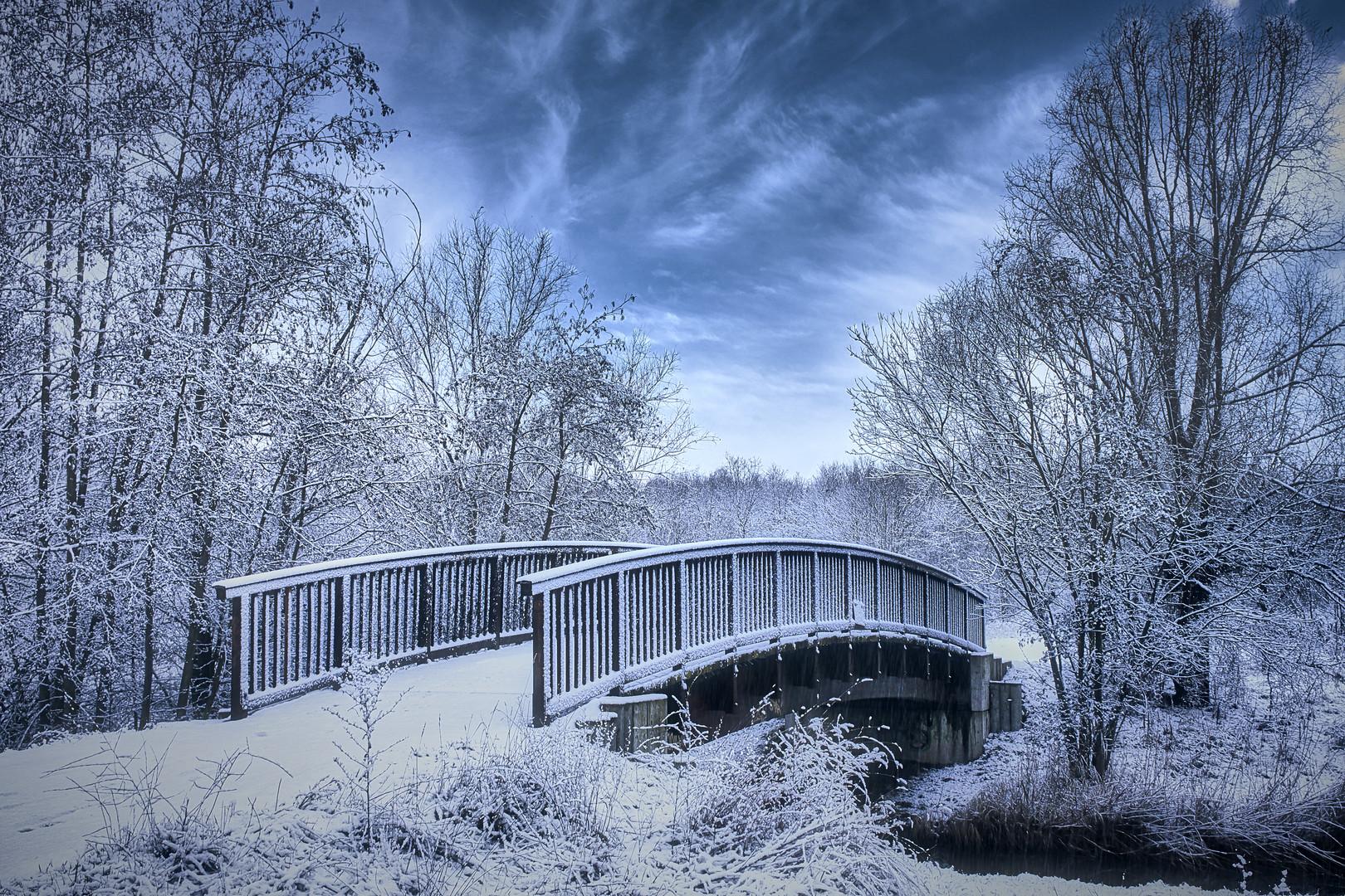 winter - wonderland