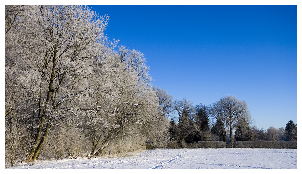 Winter Wonderland lV