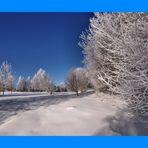 *+*+*+*+*+*+*+*~~~ Winter Wonderland ~~~*+*+*+*+*+*+*+* Nr. 14