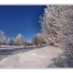 *+*+*+*+*+*+*+*~~~ Winter Wonderland ~~~*+*+*+*+*+*+*+* Nr. 18