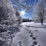 *+*+*+*+*+*+*+*~~~ Winter Wonderland ~~~*+*+*+*+*+*+*+* Nr. 2