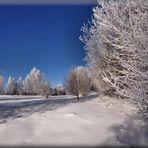 *+*+*+*+*+*+*+*~~~ Winter Wonderland ~~~*+*+*+*+*+*+*+* Nr. 22