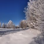 Winter Wonderland........auf vielfachen Wunsch ohne Rahmen !