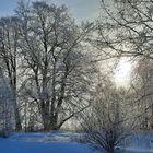 Winter World 4