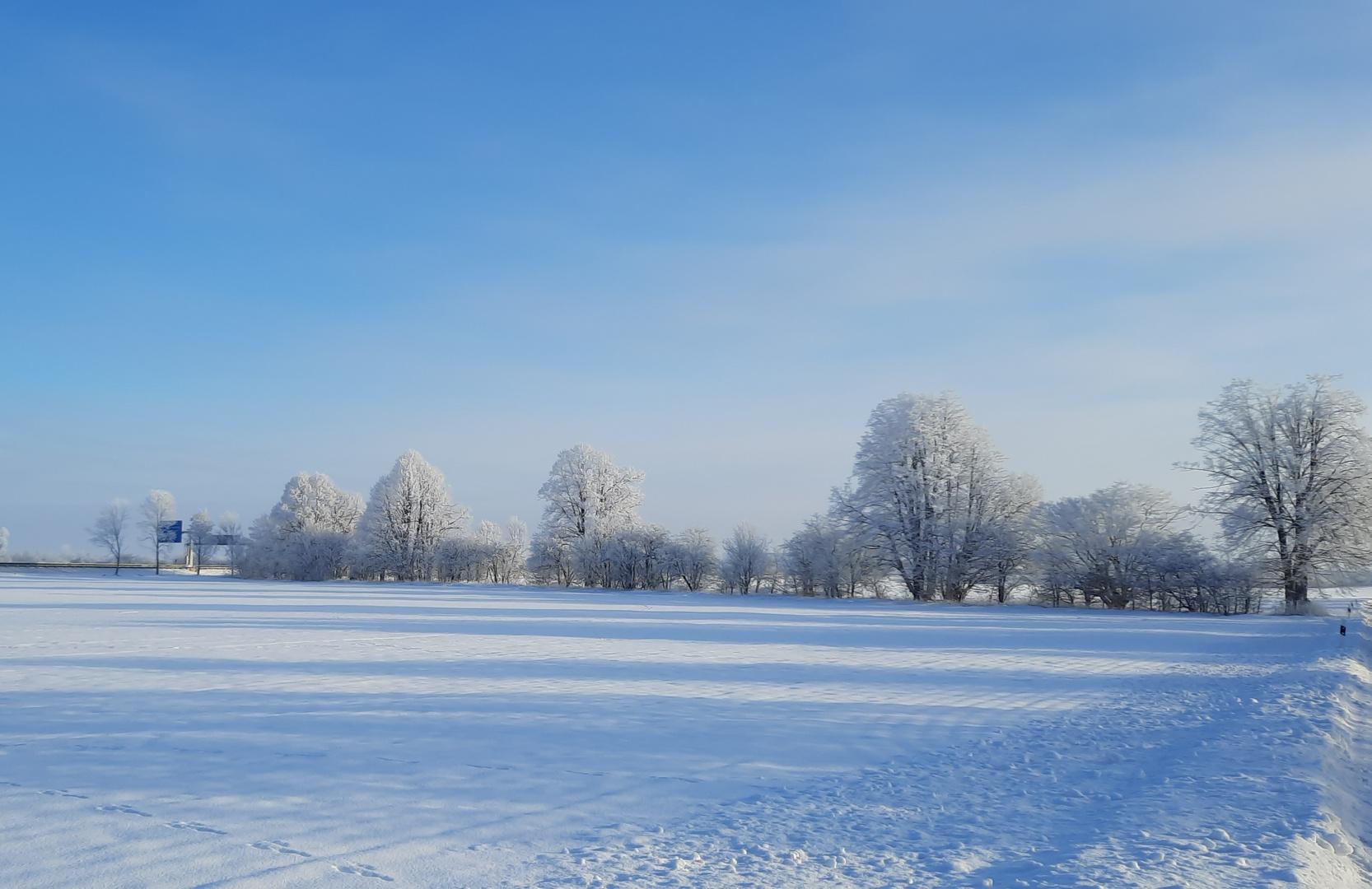 Winter World 5