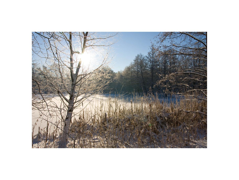 Winter XVI