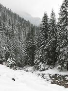 Winter- Zakopane- Koscielisko