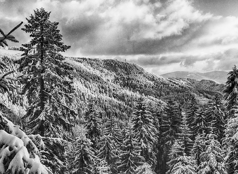 Winterabend III