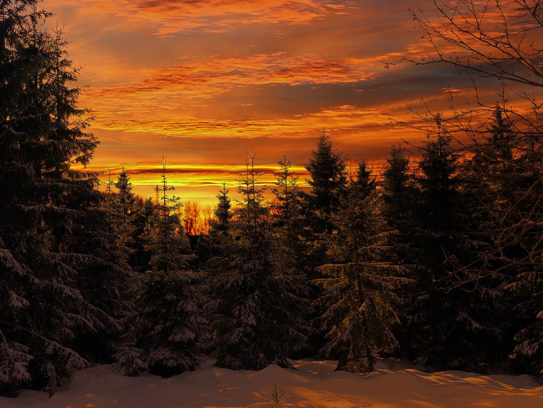 Winterabend im Harz