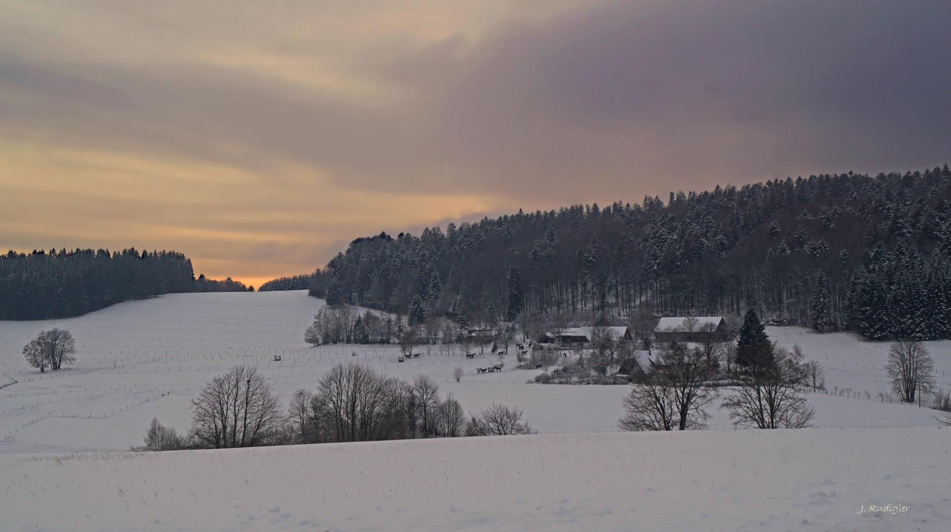 Winterabend in Altenschwand
