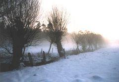 Winterabend in der Wesermarsch