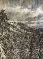 Winterabend -Texturvariante