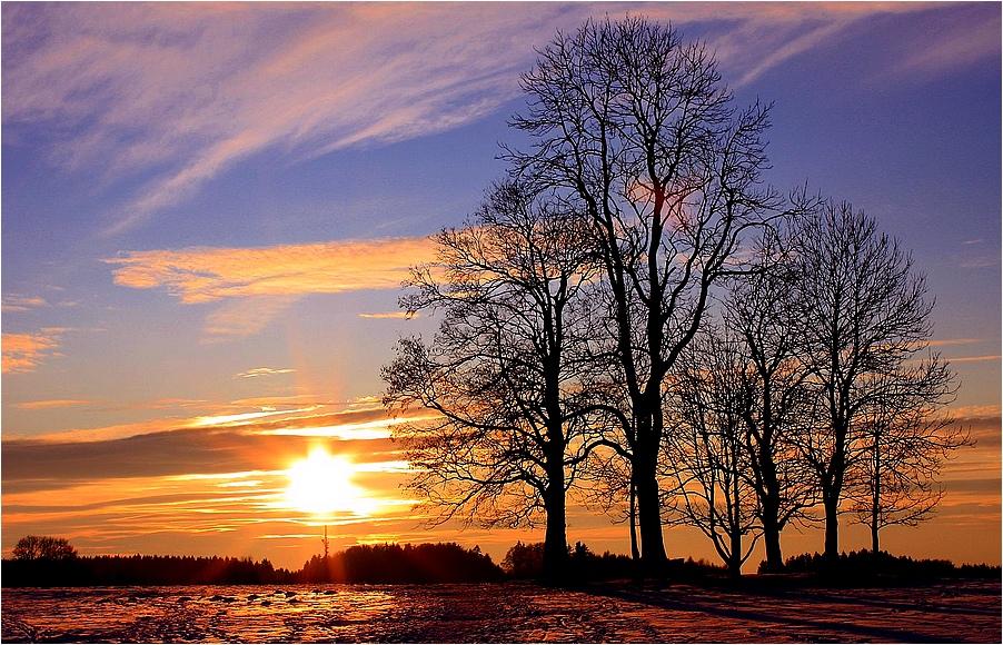 Winterabendsonne bei Icking