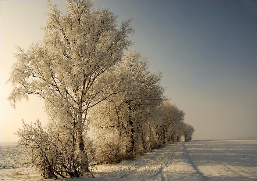 Winterabschied 2005
