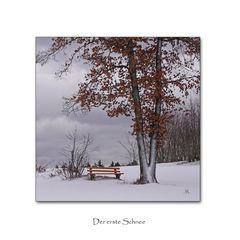Winteranfang im Hotzenwald (2)