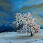Winterbaum in der Abendsonne (60 x 40 / 2010)